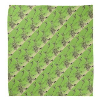 Basil and Pepper Patterned Bandana