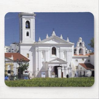 Basilica Nuestra Senora del Pilar in Recoleta Mousepads