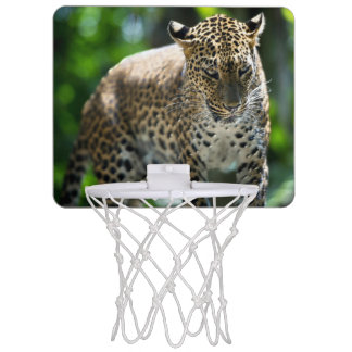 basket ball goal mini basketball hoop