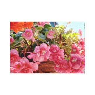Basket of Begonias Canvas Print