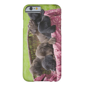 Basket of labrador retriever puppies barely there iPhone 6 case