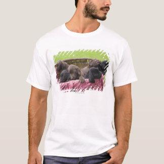 Basket of labrador retriever puppies T-Shirt