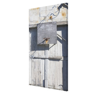 Basketball net on rustic building stretched canvas print