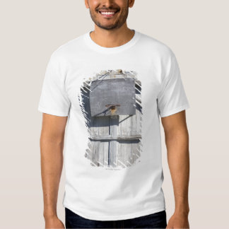 Basketball net on rustic building t shirt