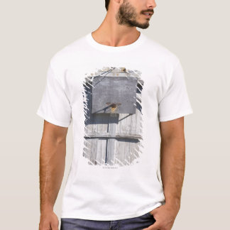 Basketball net on rustic building T-Shirt