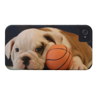 """Basketball Puppy"" English Bulldog iPhone 4 Case"