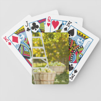 Baskets of apples in orchard bicycle playing cards