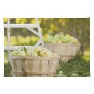 Baskets of apples in orchard placemat