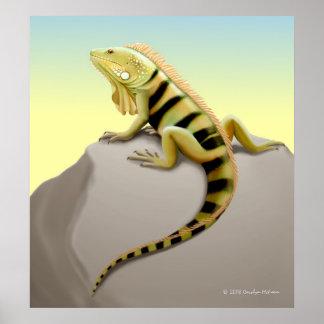Basking Green Iguana Print