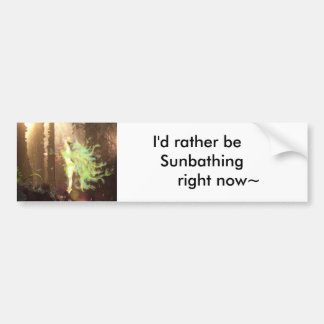 Basking in the Morning Rays Car Bumper Sticker