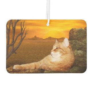Basking orange tabby kitty
