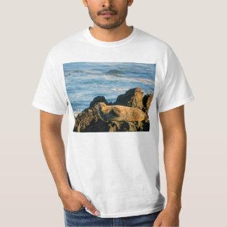 Basking seal t shirt
