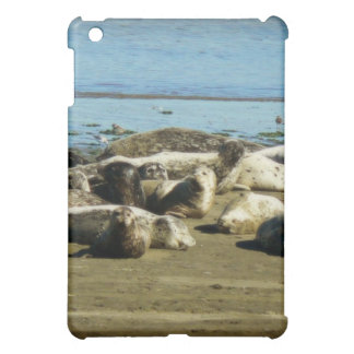 Basking Seals Cover For The iPad Mini