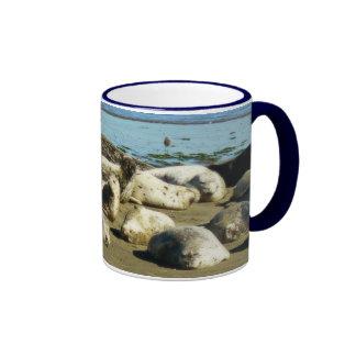 Basking Seals Coffee Mugs
