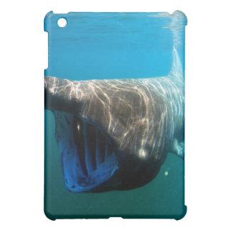 Basking shark iPad mini cases