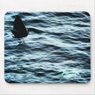 Basking shark mouse pad
