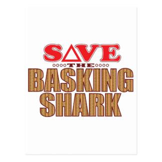 Basking Shark Save Postcard