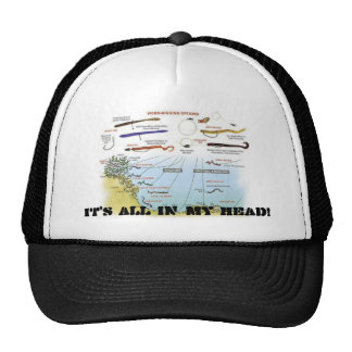 Bass%20Rigs, IT'S ALL IN MY HEAD! Hat