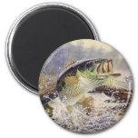 bass fish 6 cm round magnet