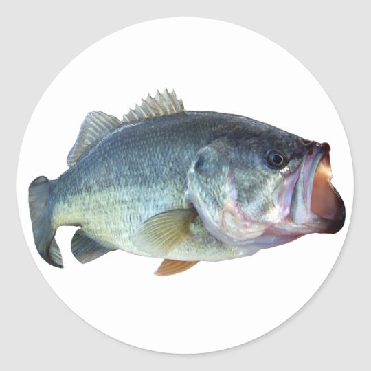 Bass Fish Classic Round Sticker