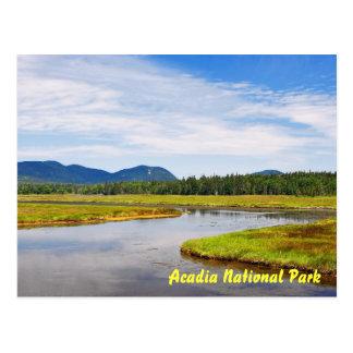 Bass Harbor Marsh Postcard