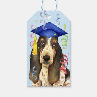 Basset Graduate