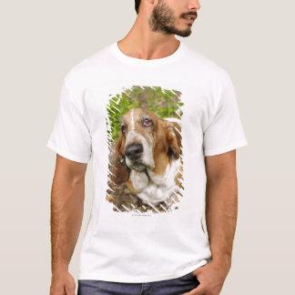 Basset Hound 2 T-Shirt