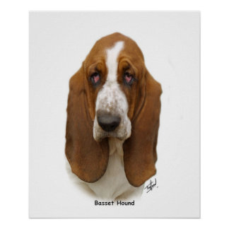 Basset Hound 9L9D-05 Poster