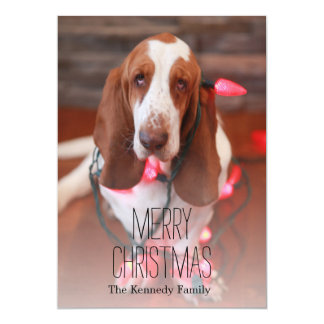 basset hound, christmas, christmas lights card