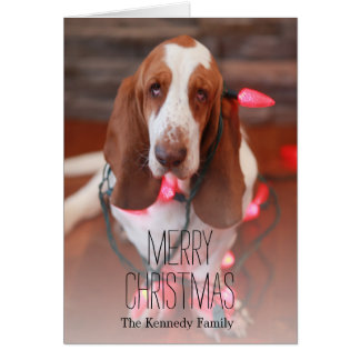 basset hound, christmas, christmas lights greeting card