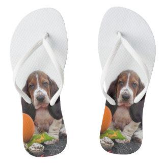 Basset Hound dog Flip Flops