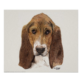 Basset Hound Dog, Watercolor Print