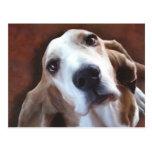 Basset Hound Fine Art Painting Portrait Postcard