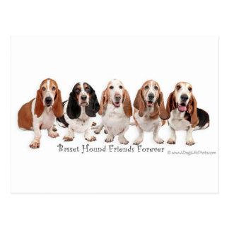 Basset Hound Friends Forever Postcard