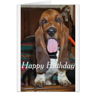 Basset hound Happy Birthday card