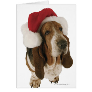 Basset Hound in Santa Hat Card