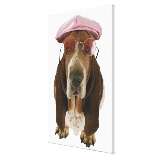 Basset hound in sunglasses and cap canvas print