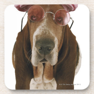 Basset hound in sunglasses and cap coaster