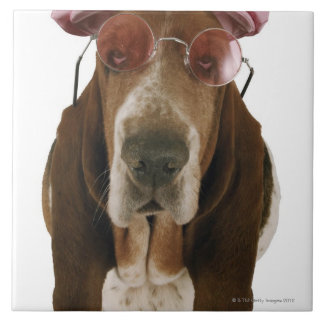 Basset hound in sunglasses and cap tile