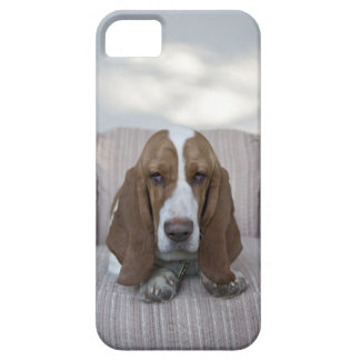 Basset Hound iPhone 5 Cover