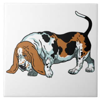 basset hound large square tile