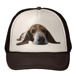 Basset Hound lying down Cap