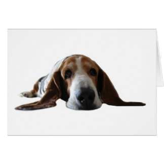 Basset Hound lying down Card