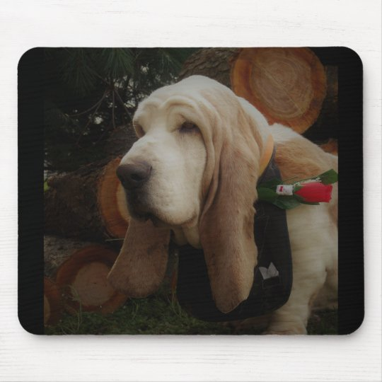 Basset hound mouse pad