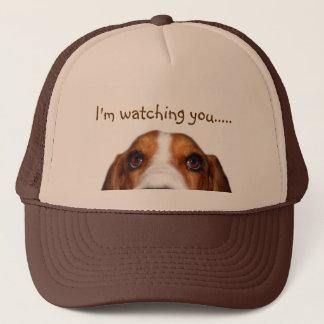 Basset Hound peeking in Trucker Hat