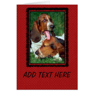 Basset Hound Photograph Card