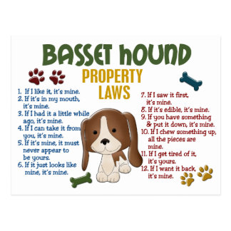 Basset Hound Property Laws 4 Post Cards
