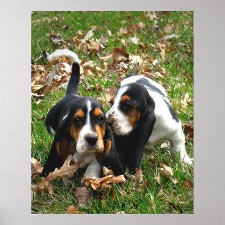 Basset Hound Puppies 2 Poster