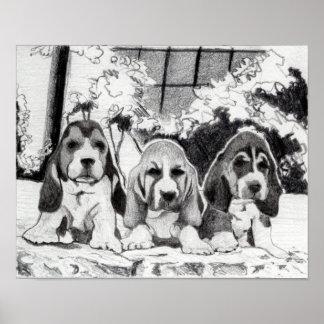 Basset Hound Puppies Dog Portrait Poster