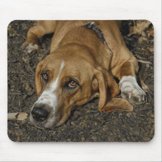 Basset Hound Rescue Dog Mable Mouse Pad